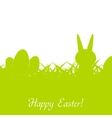Green Easter rabbit eggs and grass vector image