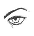 an eye vector image