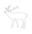 coloring book page deer with antler vector image