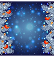 White Christmas tree branches with bullfinches vector image