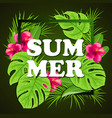 tropical green background vector image