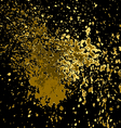 gold paint splash splatter and blob shiny on black vector image