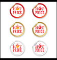 Hot price stickers vector image