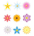 icon set of flowers vector image