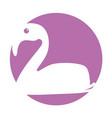 exotic flamingo silhouette icon vector image