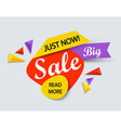 Just now sale banner vector image