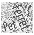 The Laws On Ferrets Word Cloud Concept vector image