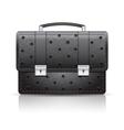 Briefcase black ostrich vector image