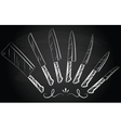 Set of steel kitchen knives vector image