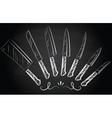 Set of steel kitchen knives vector image