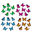 Collection of color butterflies vector image vector image