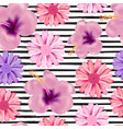 beautiful seamless floral summer pattern vector image vector image