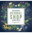 Herbal shop emblem with herbs and flowers vector image