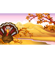 Autumn turkey Vector Image