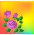flower background roses vector image