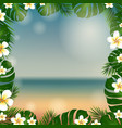 frame palm tree and plumeria vector image