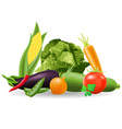 still life of vegetables vector image vector image