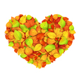 Big autumn heart vector image vector image