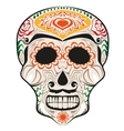 Day of Dead painted skull Dia de Muertos vector image