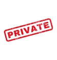 Private Rubber Stamp vector image