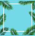 frame with palm trees vector image