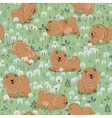 Happy puppies on the blossoming field vector image