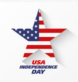 usa independence day banner or poster design vector image
