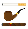 Cigarette pipe and cigar vector image