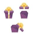 Gift Box New Year Cartoon Flat Design Icon Set vector image vector image