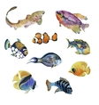 Marine life watercolor set with Tropical fish vector image