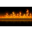 Fire flames on black background vector image