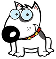 Happy White Bull Terrier Sitting vector image