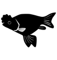 Silhouette of porkfish vector image vector image