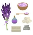 Spa salon relaxation accessories vector image