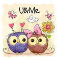 two cute owls on orange background vector image
