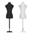 Female Dressmakers Mannequin vector image