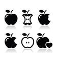 Apple apple core bitten half icons vector image