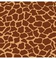 giraffe skin vector image