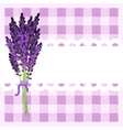 Bunch of lavender flowers on tartan backdrop vector image