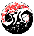 bonsai yin yang vector image