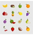 Colorful Fruit Icon Set on White Background vector image