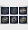 Decorative mandala style backgrounds vector image