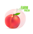 Ripe peach with a green leaf on a white background vector image