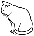 White cat vector image