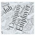 job interview faqs dlvy nicheblowercom Word Cloud vector image
