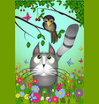 a cat looking to the bird vector image