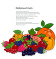 poster juicy fruits and berries vector image