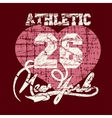 New York City Typography Graphics T-shirt vector image