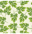 seamless parsley pattern vector image vector image