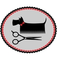 grooming dog sign with scissors vector image vector image